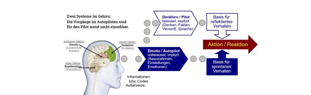 SV-Dialogmethode svBlog zwei System im Gehirn Pilot und Autopilot